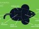 Trojanهای ایجاد کننده دسترسی RAT