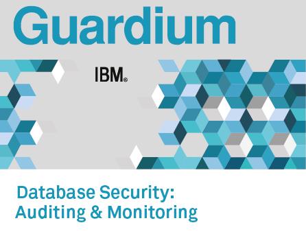 IBM Security Guardium Data Activity Monitor