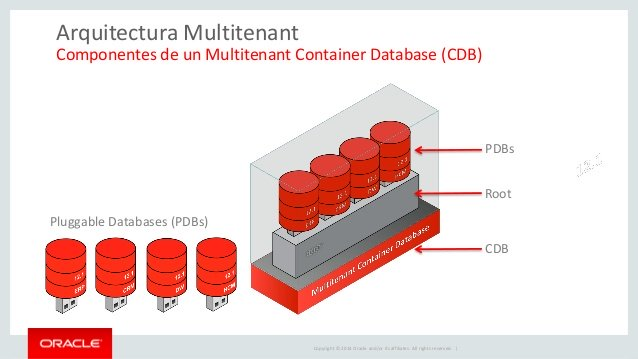 Oracle Multitenant چیست