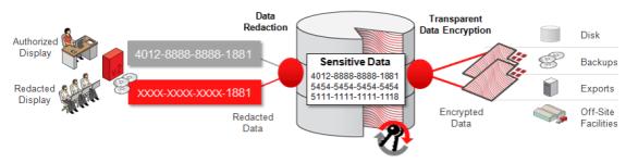 Oracle Advanced Security چیست