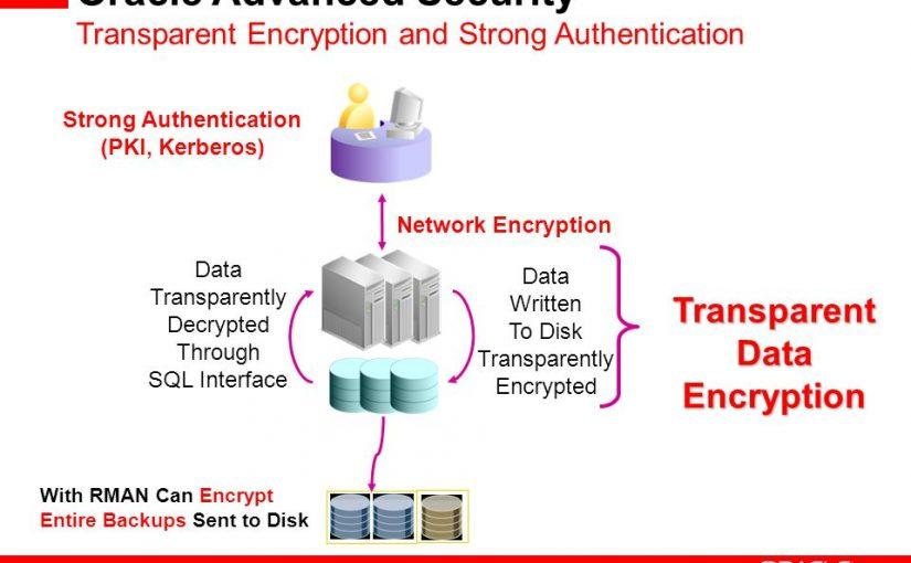 بررسی Oracle Advanced Security و قابلیتهای آن
