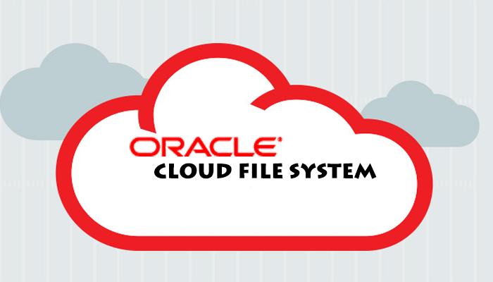 بررسی تکنولوژی Oracle Cloud File System